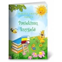 Skapiškio vidurinė mokykla