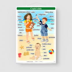 Części ciała