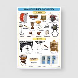 Mušamieji muzikos instrumentai