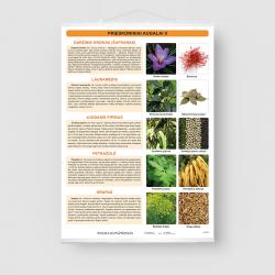 Prieskoniniai augalai II