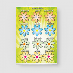 """Gimtadienio plakatas """"Gėlės"""""""