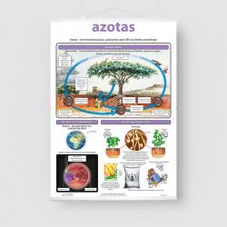 Azotas