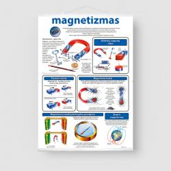 Magnetizmas